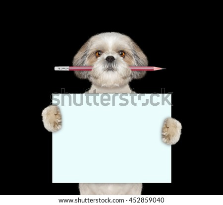 dog holding red pencil and blank -- isolated on black