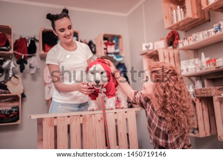 Dog in red. Curly woman smiling while watching her cute dog wearing red clothing