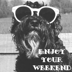 Dog in sunglasses with text: Enjoy your weekend