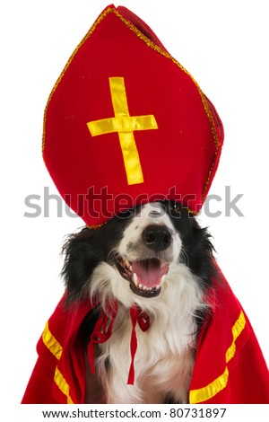 Dog in the clothes from the Dutch Sinterklaas