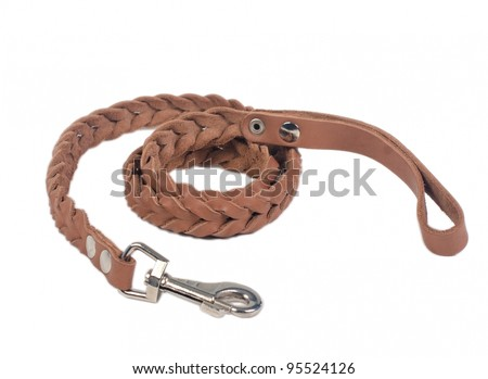 Dog leather leash, isolated on white background
