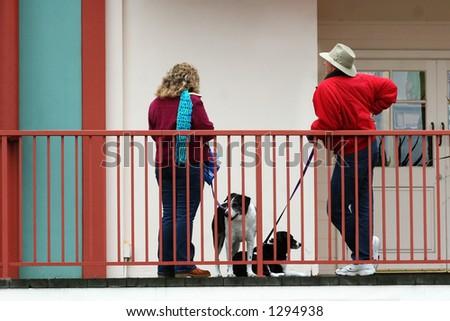 Dog lovers talking