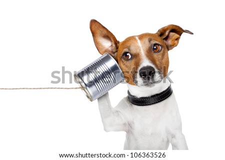 dog on the phone with  a can - stock photo