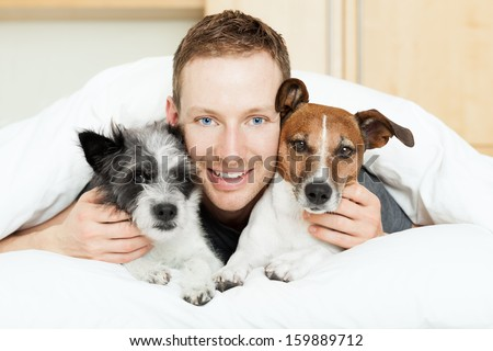 Dog Owner In Bed With Two Cute Dogs