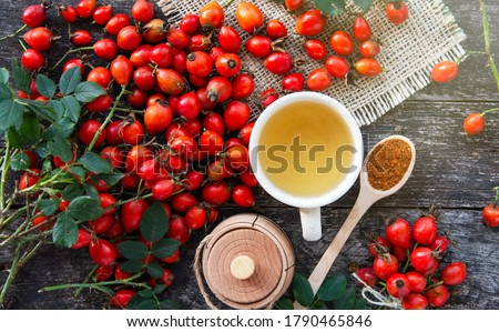 Dog rose, bunch branch Rosehips, types Rosa canina hips and herbal tea - Medicinal plants herbs composition Stock photo ©
