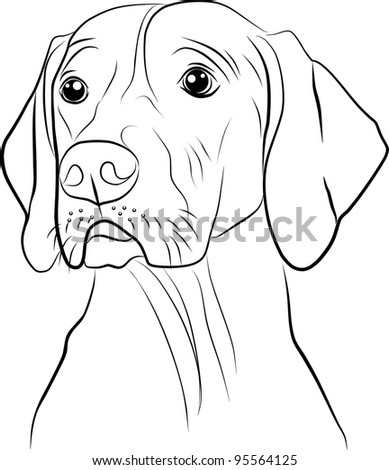 dog silhouette on a white background - freehand