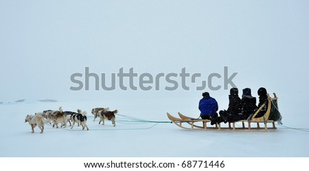 Dog sledging trip in cold snowy winter, running dogs,Kulusuk village,Greenland - stock photo