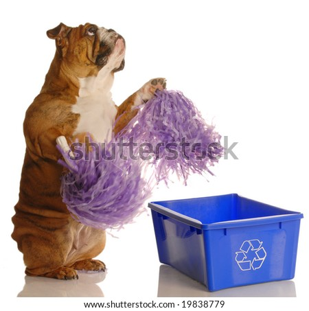 dog standing up with pompoms encouraging recycling - please recycle