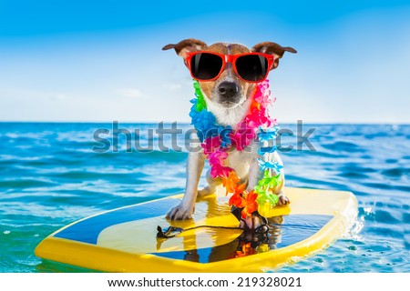 dog surfing on a surfboard wearing a flower chain and sunglasses, at the ocean shore #219328021