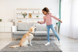 Dog Training Commands Concept. Positive black girl teaching pet at home in living room, playing with golden retriever and rewarding him with treats, standing indoors and giving animal food