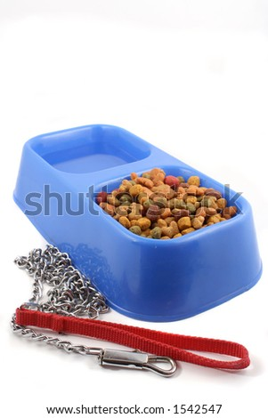 dog  tray with food and water and leash chain - stock photo