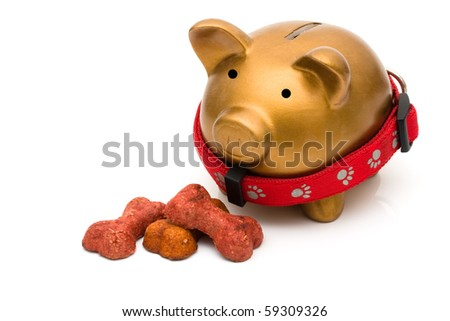 Dog treats with piggy bank isolated on a white background, Costs of dog food