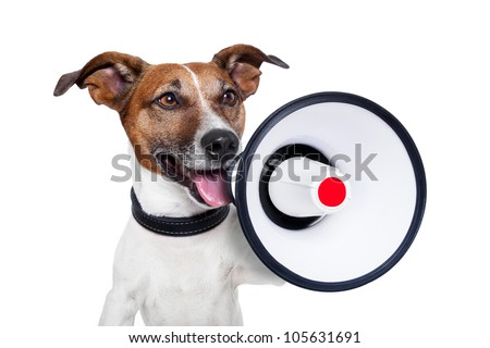 dog with a megaphone