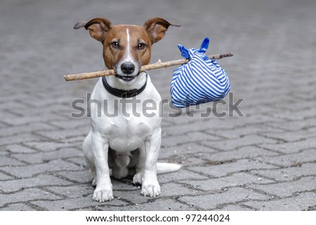 dog with a stick and a bag