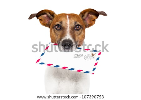 dog with glasses delivering air mail envelope with stamp - stock photo