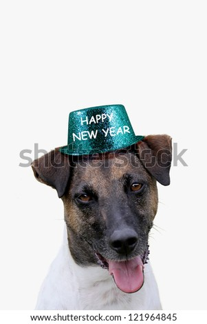 Dog with Happy New Year Hat