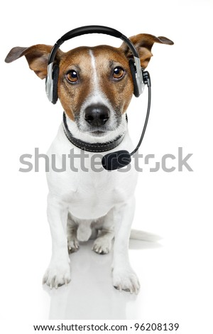 dog with head set - stock photo