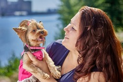 Dog Yorkshire terrier in her arms thick mature caucasian woman.