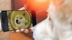 Dogecoin cryto with A dog watching DOGE digital cryptocurrency in smartphone on internet exchange market. Business technology concept.