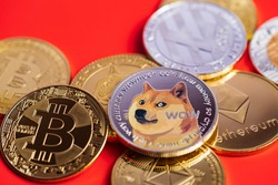 Dogecoin DOGE group included with Cryptocurrency coin bitcoin, Ethereum ETH, Bitcoin Cash bch, Ethereum Classic ETC symbol Virtual blockchain technology future is money lose Close up on red background