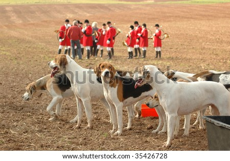 Doggery of hunting dogs and musicians with hunting horns.