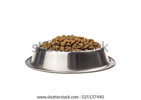Photo of  doggy bowl with meat isolated on white