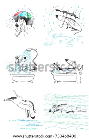 Stock Photo Dogs set 9. Water