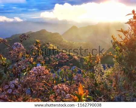 DOI LUANG CHIANG DAO, At Chiangmai in Thailand, This limestone mountain at 2,225 m. and the third highest in Thailand. In winter there is a view of the mist. It is a very beautiful place. DEC 11, 2018 Photo stock ©