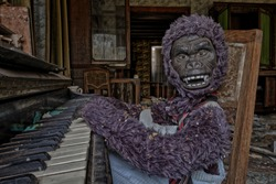 Doll Monkey plays Piano in Abandoned Castle in Belgium (Urbex).