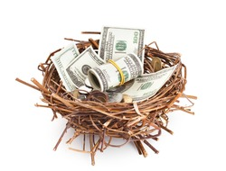 Dollar bills and coins in a birds nest isolated on white background