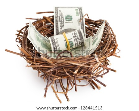 Dollar bills in a birds nest isolated on white background
