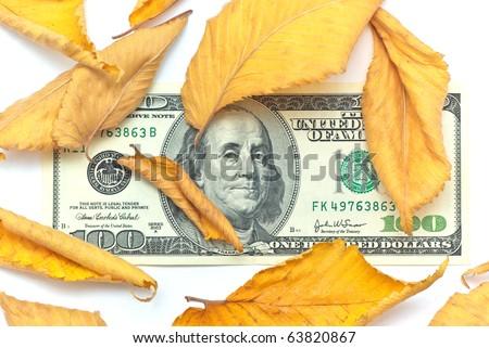 Dollar in autumn leafs. Element of design.