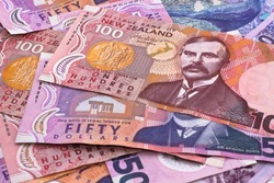 Dollar notes in New Zealand currency.