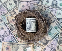 Dollars in a bird's nest as egg against dollars.