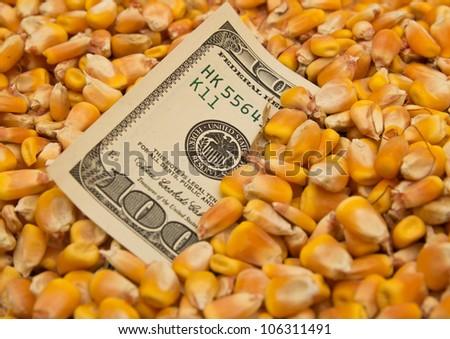 dollars in corn