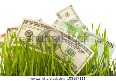 dollars in the green grass  on a white background