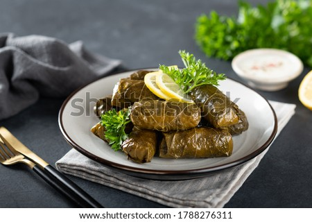 Dolma on a dark background , traditional Caucasian, Turkish and Greek cuisine