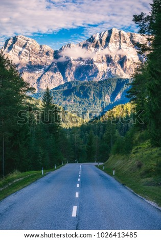 Dolomite Alps in Italy. Beautiful day. The road passes in the coniferous forests at the foot of limestone and dolomite rocks. The concept of active and car tourism
