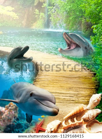 Dolphin and sea and beach