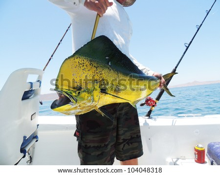 цена рыбалки в мексике
