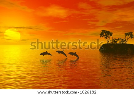 dolphins and sunset - stock photo