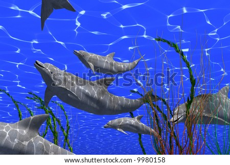 dolphins  femaly under water image with sunlight effect (3D render)