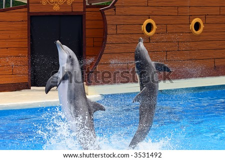 Dolphins jumping out of water at an amusement park