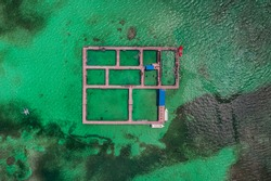 Dolphins, sharks, stingray in caribbean sea pool park. Swimming with fish. Aerial view.