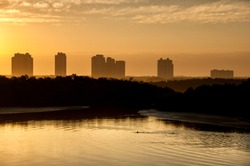 Dolphins swim beneath highrises in the hazy light of a golden sunrise over Estero Bay, Florida.