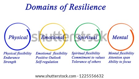 Domains of Resilience Stock foto ©