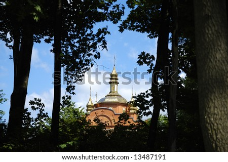 Domes of a forest monastery. Ukraine.