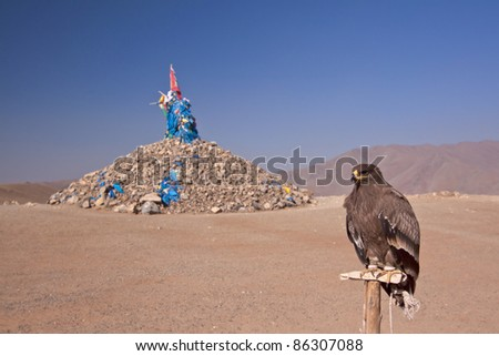 domestic Eagle close to an Mongolian stony ovoo - stock photo
