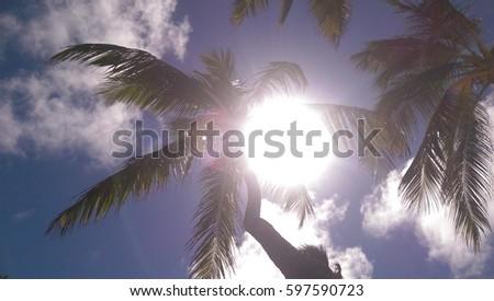 Dominican sunshine #597590723