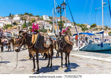 Donkeys at the Hydra island  in a summer day in Greece Foto stock ©